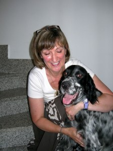 gassie our rescue setter